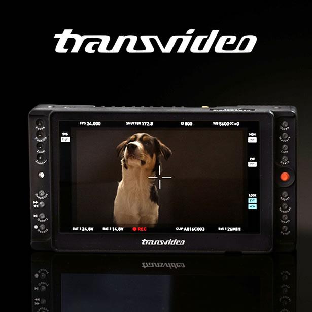 transvideo
